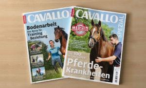 Cavallo Special