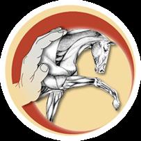 Pferde Osteopathie – Eifel