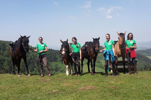 Team Glückspferde Aussicht
