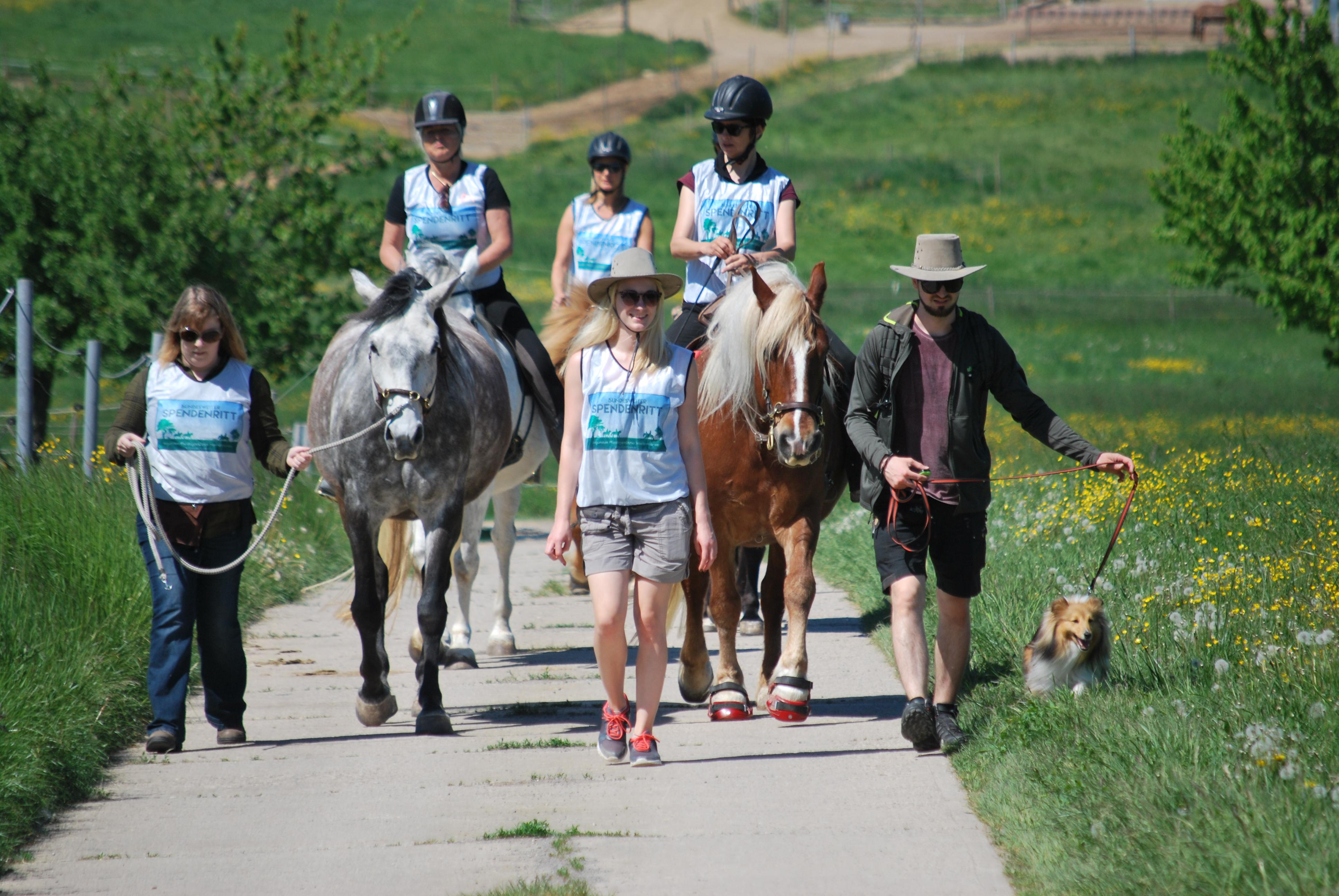 Antje Seeber – Spendenritt – Pferdegestützten Interventionen