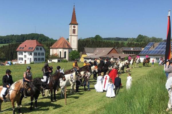 Seite an Seite mit Pferden – Segnung in Hoppentenzell